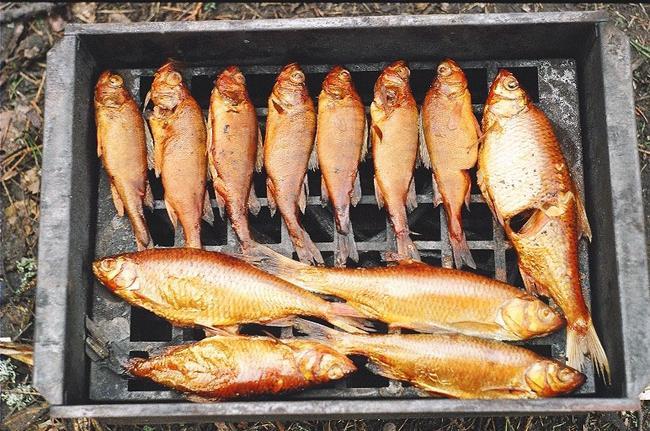 Горячее копчение рыбы в домашних условиях, рецепт копченой