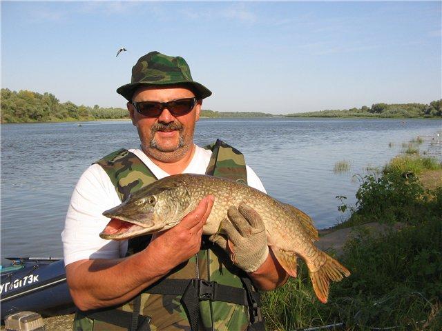 какая рыба клюет в мае в астраханской области