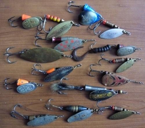 в какое время суток клюет рыба