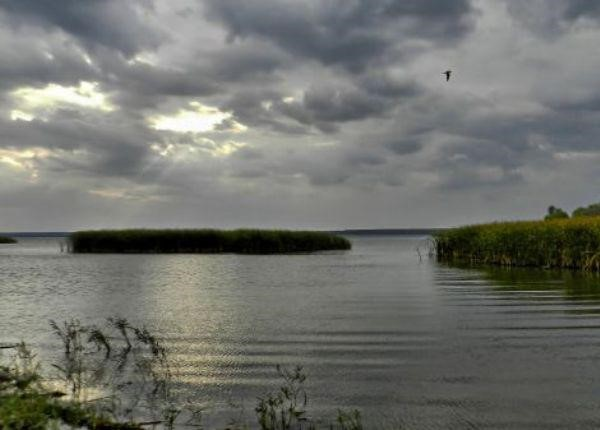 прогноз клева рыбы в кривом роге карачуновское водохранилище
