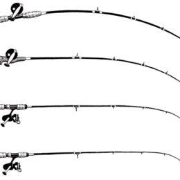 Что представляет собой строй спиннинга?