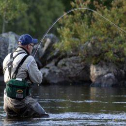 Клюет ли рыба в ветреный день?