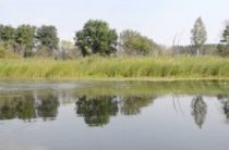 Бесплатная рыбалка в Воронежской области