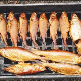 Коптим рыбу в домашних условиях