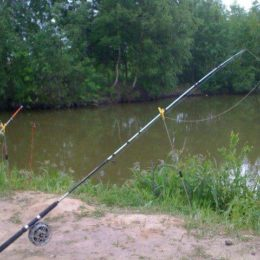 Ловля леща на реке