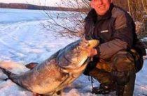 Ловля толстолобика зимой