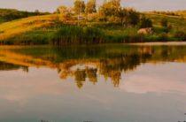 Рыбалка на Нарских прудах