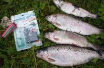 Ловля рыбы с использованием приманки «Супер клев»