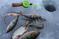 Рыбалка в Нижнем Тагиле