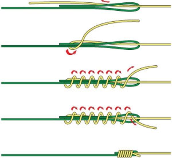 Albright knot uzel