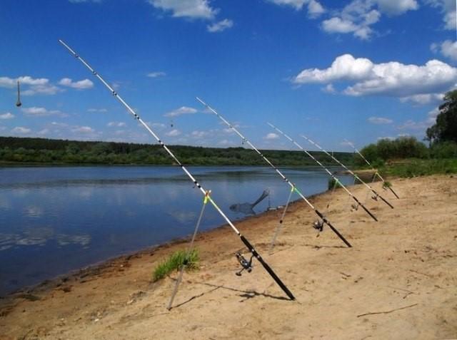 Резинки для рыбалки
