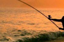 Выбираем оснастку для морской рыбалки